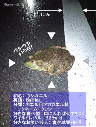 ぴょん吉スカウター.jpg