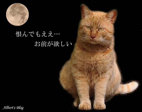 キムタクニャンソニー.jpg