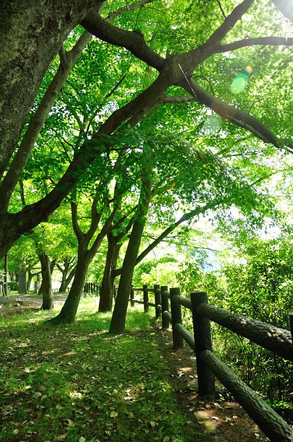 犬山にて3.JPG