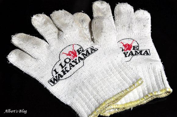 I LOVE WAKAYAMA 手袋.JPG