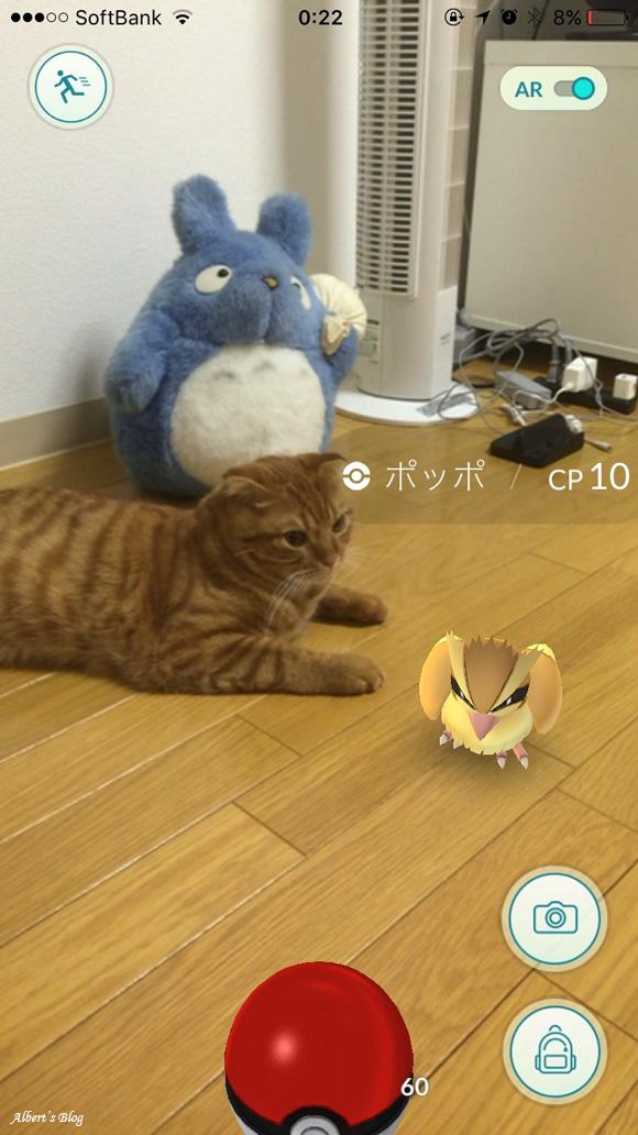 pokemon GO 2.jpg