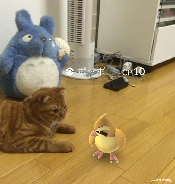 pokemon GO 3.jpg